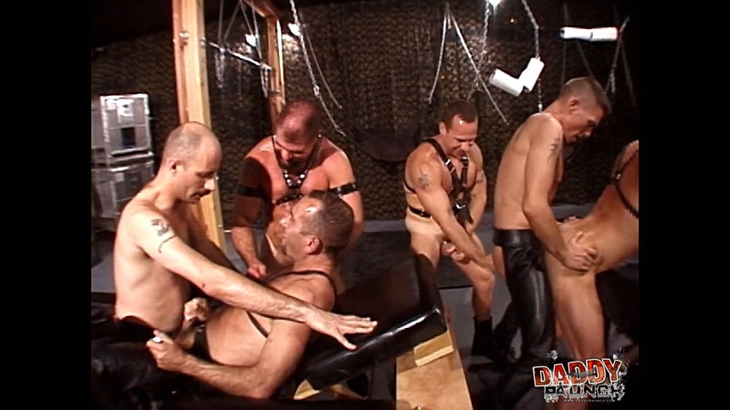 Leather Pigs 1