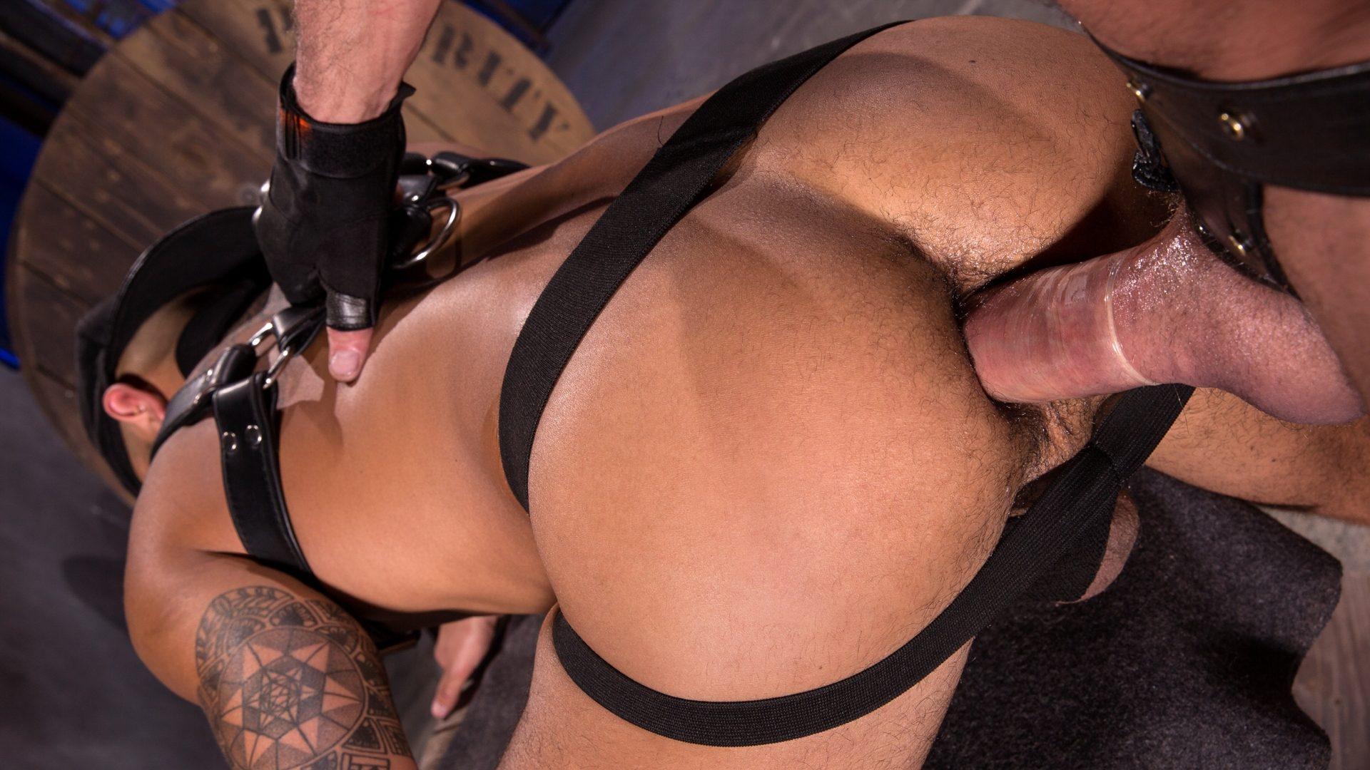 Leather Men: Myles Landon and Talon Reed – Part 2